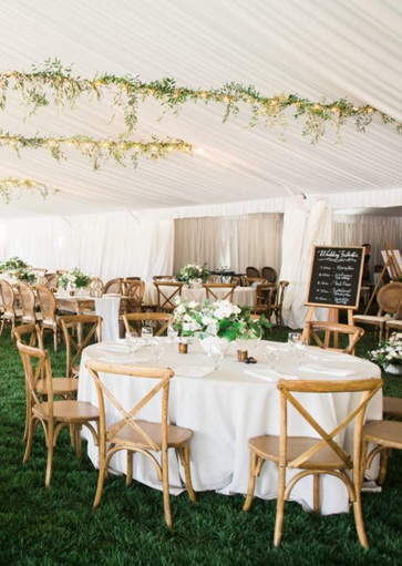 Wedding Chair Rentals.Home Eventrent